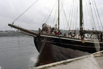 img195-88.jpg